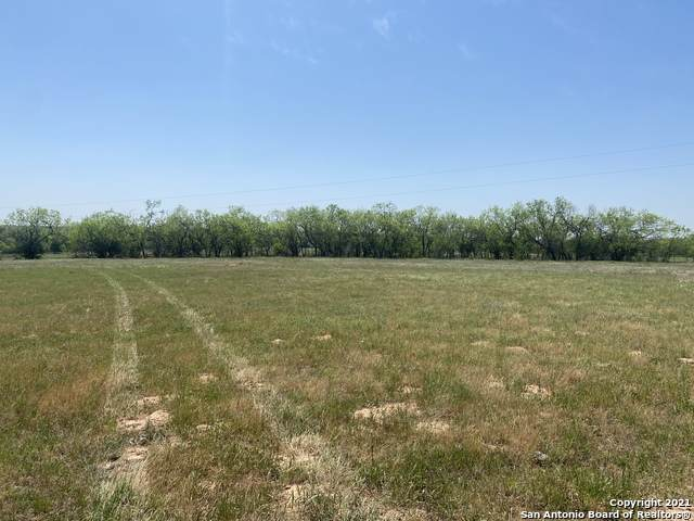 868 Cr 339, La Vernia, TX 78121 (MLS #1519703) :: The Lopez Group