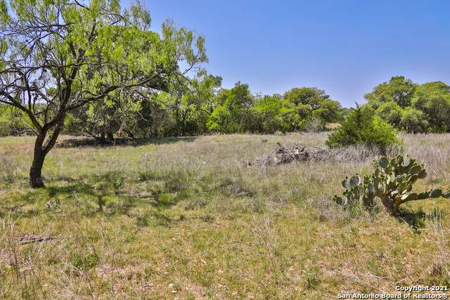 30931 Firebird Dr, Boerne, TX 78015 (MLS #1519983) :: REsource Realty
