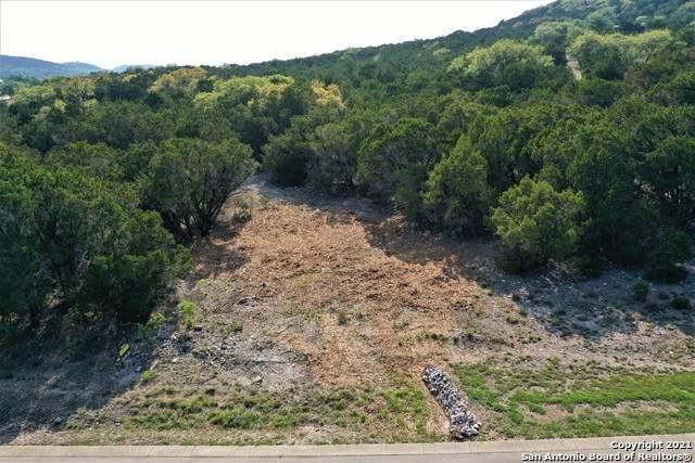 341 Pr 1746, Mico, TX 78056 (MLS #1520053) :: Carter Fine Homes - Keller Williams Heritage