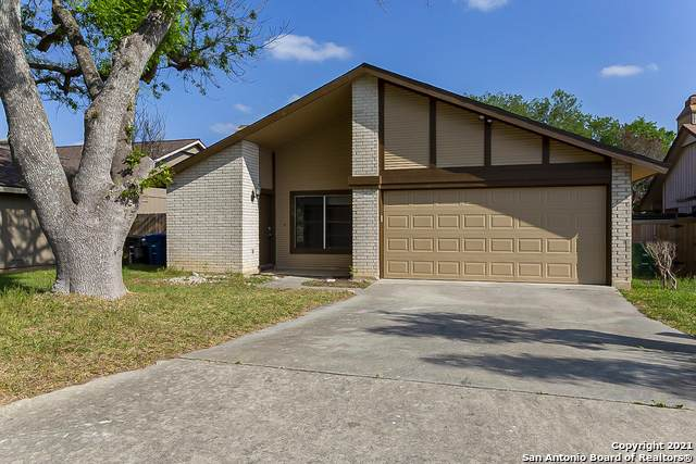 5926 Rebel Ridge St, San Antonio, TX 78247 (MLS #1520070) :: The Real Estate Jesus Team