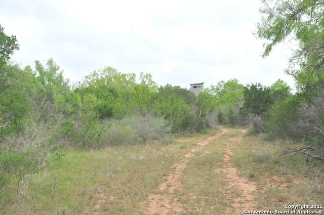 0 Cr 654, Devine, TX 78016 (MLS #1520071) :: Tom White Group
