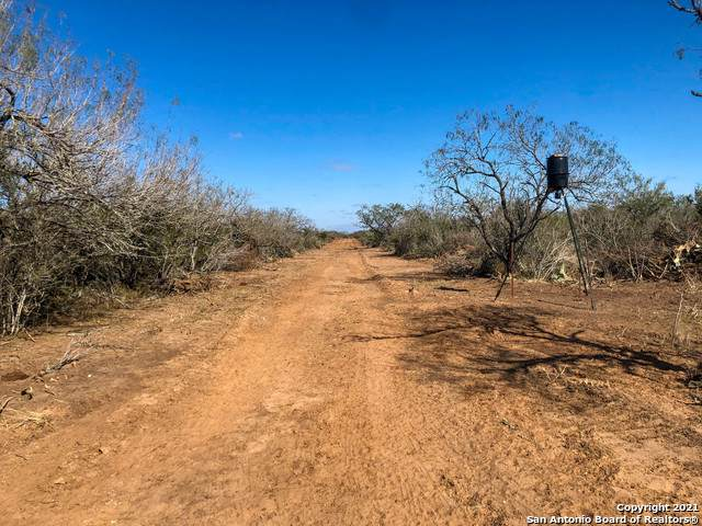 001 Fm 2295, Benavides, TX 78341 (MLS #1520231) :: REsource Realty