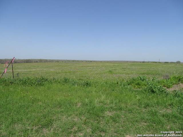 8107 Us Highway 181 S, Falls City, TX 78113 (MLS #1520266) :: The Glover Homes & Land Group
