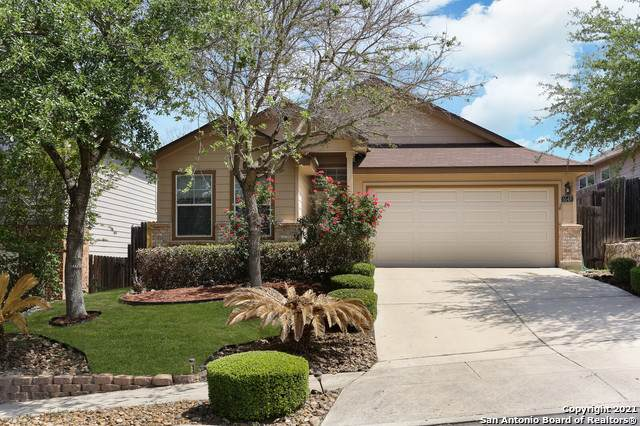 5548 Saffron Way, Leon Valley, TX 78238 (MLS #1520377) :: Tom White Group