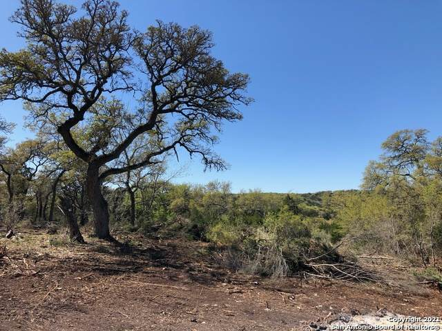 1313 (LOT 2227) Power Ridge Road, New Braunfels, TX 78132 (MLS #1520381) :: The Castillo Group