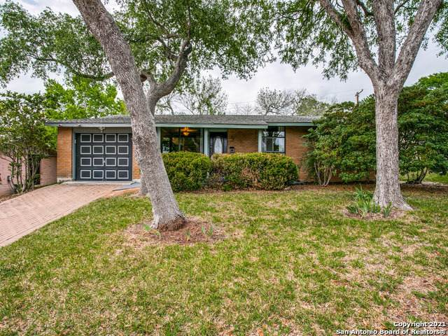311 Senova Dr, San Antonio, TX 78216 (MLS #1520412) :: The Real Estate Jesus Team