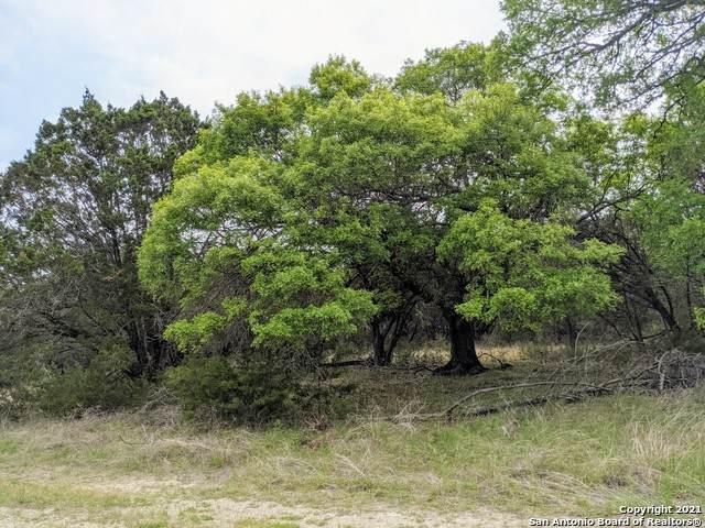 34 & 36 Stardust Cir, Wimberley, TX 78676 (MLS #1520435) :: The Glover Homes & Land Group