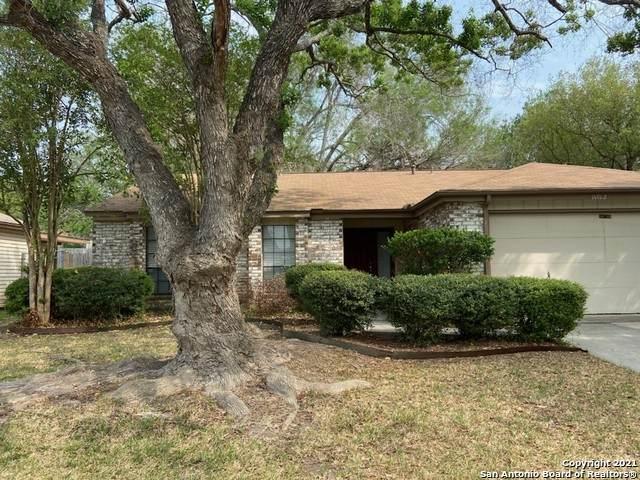 14102 Old Bond St, San Antonio, TX 78217 (MLS #1520469) :: The Lopez Group