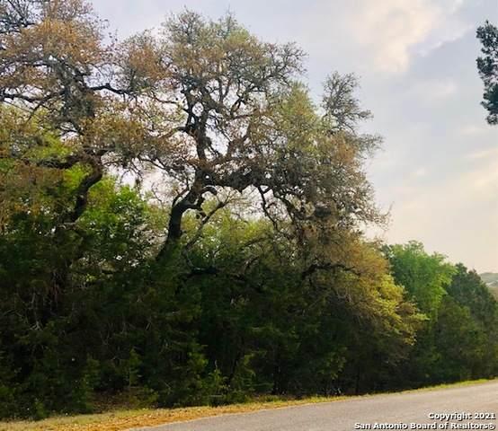 770 Stoney Ridge Rd, Bulverde, TX 78163 (MLS #1520479) :: ForSaleSanAntonioHomes.com