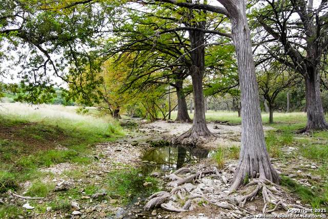 LOT 65 Sabinas Springs Rd, Boerne, TX 78006 (MLS #1520663) :: The Glover Homes & Land Group