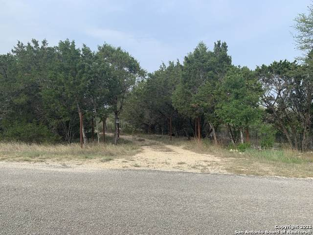 651 Eves Spring Dr, Canyon Lake, TX 78133 (MLS #1520752) :: Williams Realty & Ranches, LLC