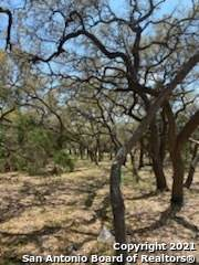 989 Jenny Leigh Trail, Bulverde, TX 78163 (MLS #1520793) :: Real Estate by Design