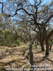 989 Jenny Leigh Trail, Bulverde, TX 78163 (MLS #1520793) :: ForSaleSanAntonioHomes.com