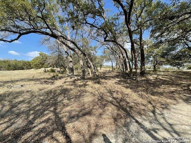 37 Lost Valley, Boerne, TX 78006 (MLS #1520887) :: The Glover Homes & Land Group