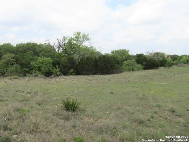 LOT 1105 James Callahan, Blanco, TX 78606 (MLS #1520889) :: The Castillo Group
