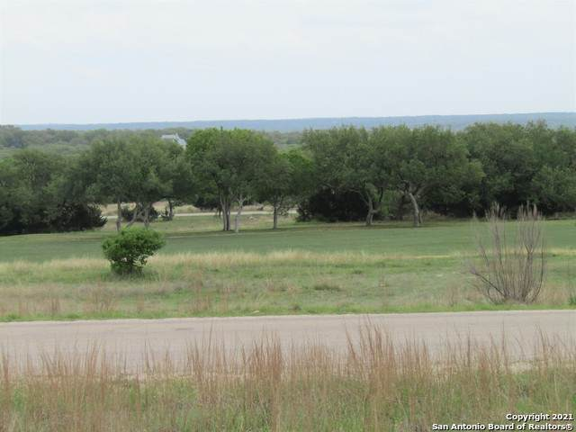 220 Lewis Todd, Blanco, TX 78606 (MLS #1520959) :: The Castillo Group