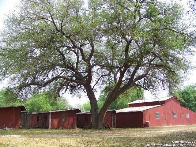 260 County Road 668, Devine, TX 78016 (MLS #1521232) :: Carolina Garcia Real Estate Group
