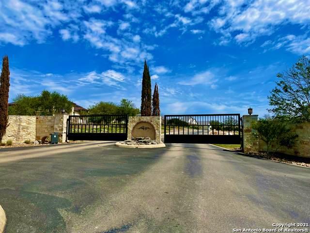 1313 Pinot Grigio, New Braunfels, TX 78132 (MLS #1521415) :: The Lugo Group