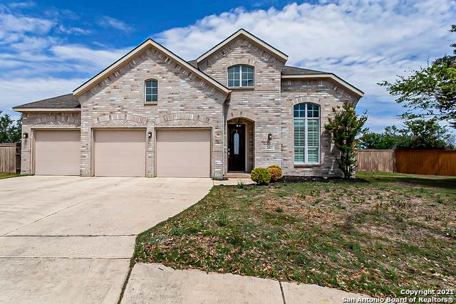 24422 Galo Cyn, San Antonio, TX 78260 (MLS #1521423) :: The Castillo Group