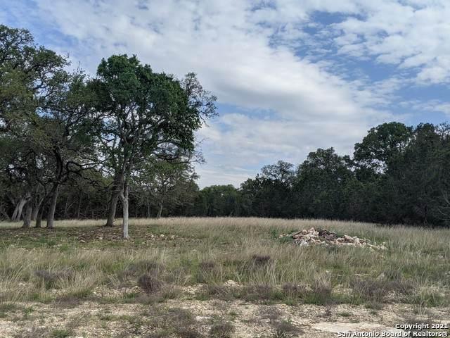 TBD Smoky Loop, New Braunfels, TX 78132 (MLS #1521483) :: BHGRE HomeCity San Antonio
