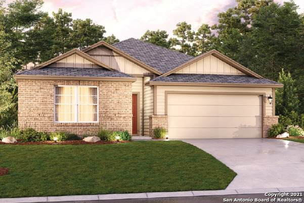 1124 Amber Lake, Seguin, TX 78155 (MLS #1521575) :: Alexis Weigand Real Estate Group