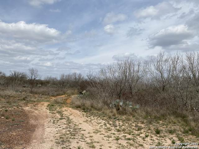 2800 #28 Cr 3000, Pearsall, TX 78061 (MLS #1521895) :: Williams Realty & Ranches, LLC