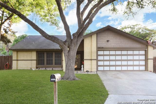 16239 Bear Run St, San Antonio, TX 78247 (MLS #1521947) :: Williams Realty & Ranches, LLC