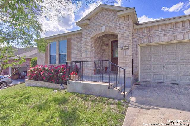 221 Springtree Ln, Cibolo, TX 78108 (MLS #1522041) :: Tom White Group