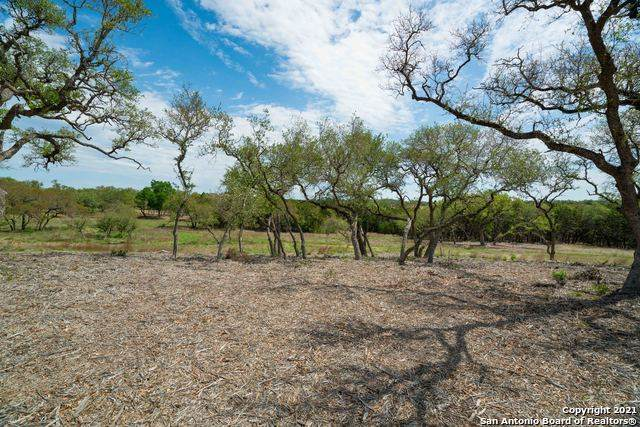 1209 Adyson Ridge, Bulverde, TX 78163 (MLS #1522158) :: The Curtis Team