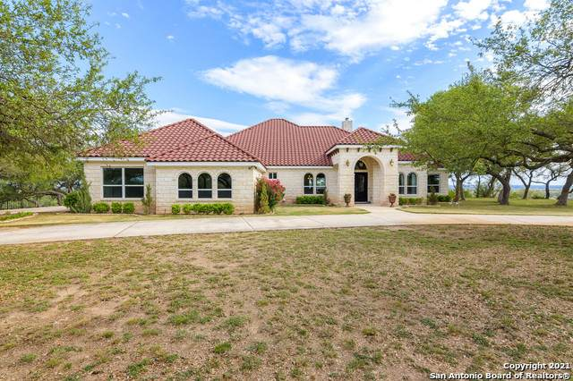 252 Astral Pt, Spring Branch, TX 78070 (MLS #1522175) :: Tom White Group