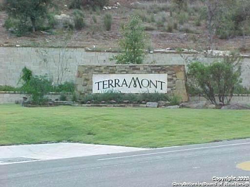 19715 Terra Mont, San Antonio, TX 78255 (MLS #1522227) :: The Gradiz Group