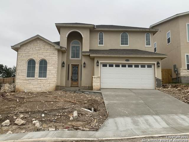 24418 Canyon Row, San Antonio, TX 78260 (MLS #1522286) :: Alexis Weigand Real Estate Group
