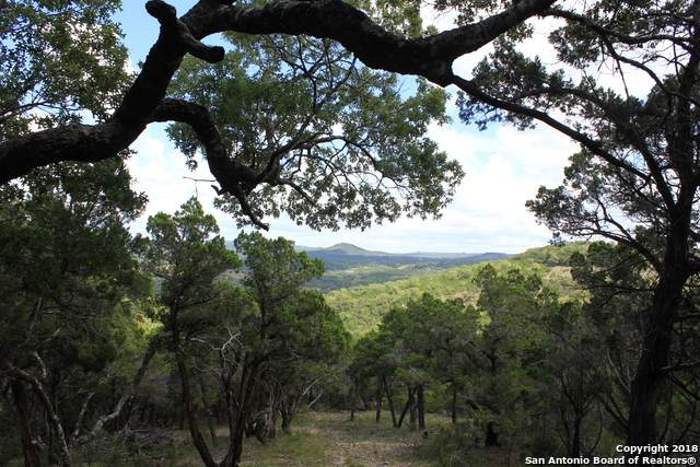 LOT 6 & 7 Caprock Ridge, Helotes, TX 78023 (MLS #1522494) :: The Mullen Group | RE/MAX Access
