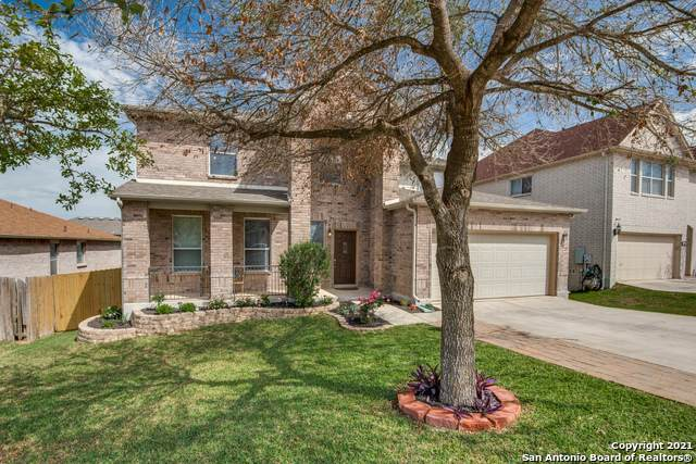 172 Springtree Blf, Cibolo, TX 78108 (MLS #1522555) :: Keller Williams Heritage