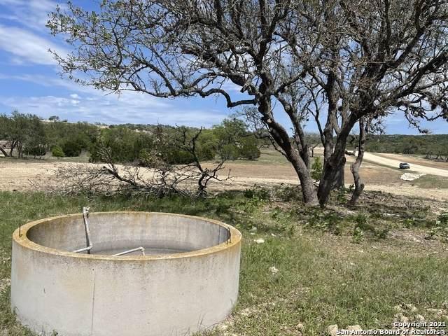 181 Carolina Trail, Blanco, TX 78606 (MLS #1522665) :: Keller Williams Heritage