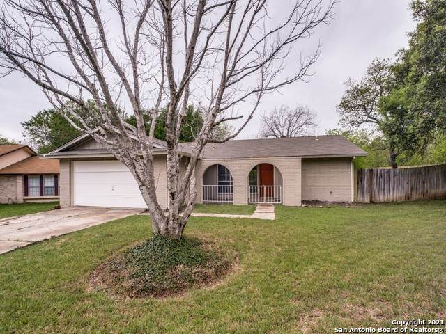 3801 Briarhaven St, San Antonio, TX 78247 (MLS #1522784) :: 2Halls Property Team | Berkshire Hathaway HomeServices PenFed Realty