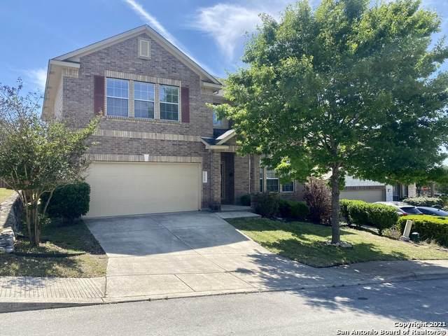 24119 Buckthorn Pass, San Antonio, TX 78261 (MLS #1522817) :: The Glover Homes & Land Group