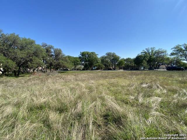 TBD Kings Point, Canyon Lake, TX 78133 (#1522928) :: The Perry Henderson Group at Berkshire Hathaway Texas Realty