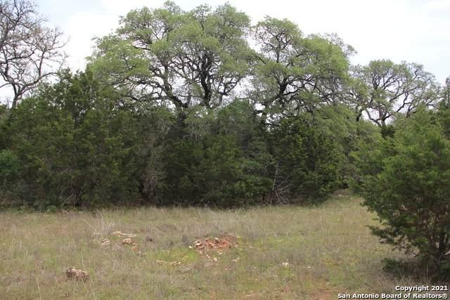 1105 Towhee Trail, New Braunfels, TX 78132 (MLS #1523130) :: The Lugo Group