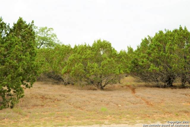 TBD Park Rd, Bandera, TX 78003 (MLS #1523480) :: The Mullen Group | RE/MAX Access