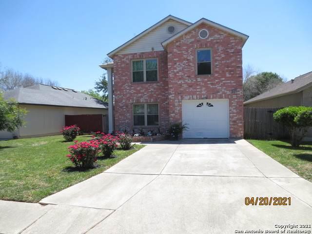 6706 Honeyridge Ln, San Antonio, TX 78239 (MLS #1523595) :: 2Halls Property Team   Berkshire Hathaway HomeServices PenFed Realty