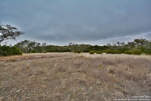 TBD Fm 32, Fischer, TX 78623 (MLS #1523765) :: The Glover Homes & Land Group