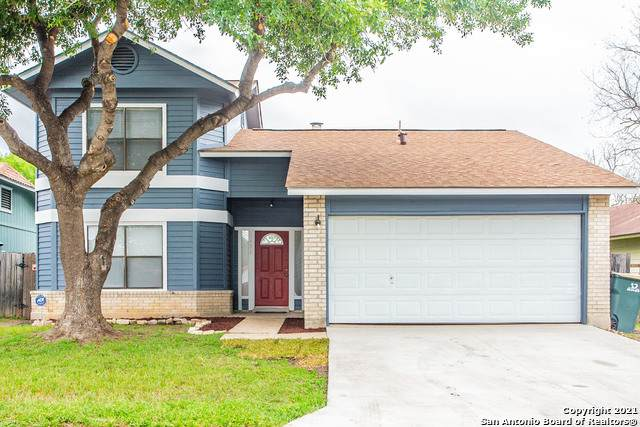 8426 Maple Ridge Dr, San Antonio, TX 78239 (MLS #1523829) :: The Glover Homes & Land Group
