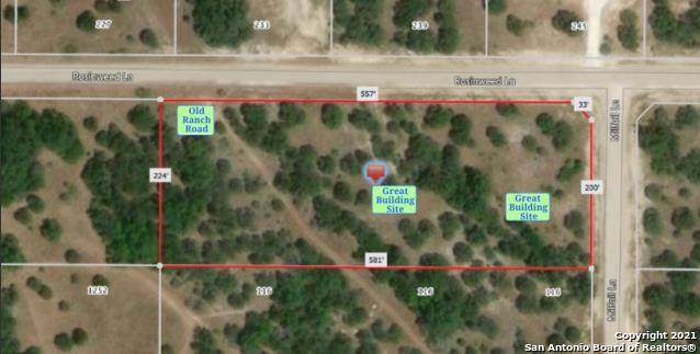 110 Milfoil Ln, Spring Branch, TX 78070 (MLS #1523839) :: The Glover Homes & Land Group