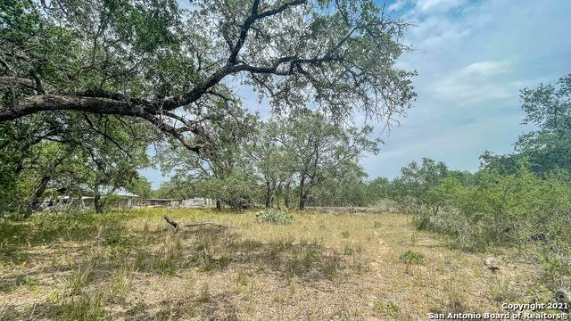 345 County Road 6813, Natalia, TX 78059 (MLS #1524145) :: BHGRE HomeCity San Antonio