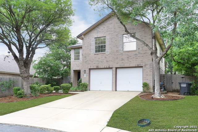 15302 Spring Dew, San Antonio, TX 78247 (#1524253) :: The Perry Henderson Group at Berkshire Hathaway Texas Realty
