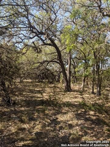 5028 Tanglewood Trail, Spring Branch, TX 78070 (MLS #1524342) :: BHGRE HomeCity San Antonio