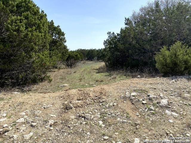2031 Campfire, Spring Branch, TX 78070 (MLS #1524360) :: 2Halls Property Team | Berkshire Hathaway HomeServices PenFed Realty