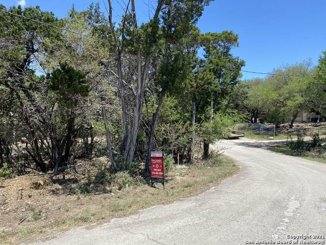 741 Rambling Dr, Canyon Lake, TX 78133 (MLS #1524361) :: BHGRE HomeCity San Antonio