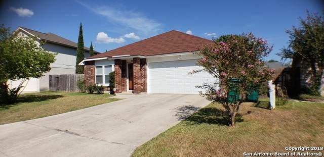 8062 Swindow Circle, Converse, TX 78109 (MLS #1524382) :: The Gradiz Group
